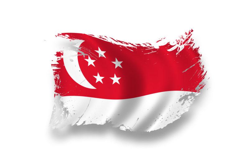 シンガポールでのネットワーク